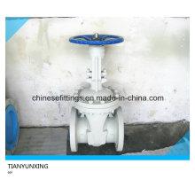 Flansch-API 600 Guss-ANSI-Carbon-Stahl-Schieber