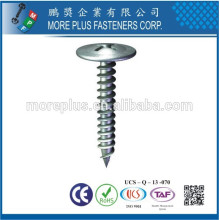 Feito em Taiwan Stainless Steel Carbon Steel Umbrella HeaTapering Tapping Screw