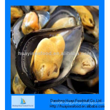 Cooked frozen half shell mussel