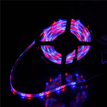 Décoration de Noël Edge Light Flexible LED Rope 3528 LED Strip