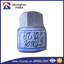 ASTM A105 carbon steel pipe plug