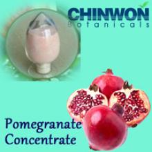 Concentré de granular à haute teneur en eau solubilité