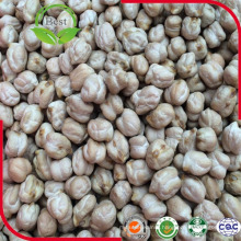 Dried Pure Natural Kabuli Chickpeas