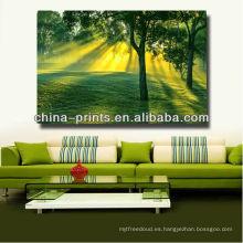 Impresión de la fotografía del bosque / arte de la pared del árbol / impresión enmarcada de la lona de los árboles