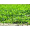 Frontera cerca rodillo-flor de malla de alambre
