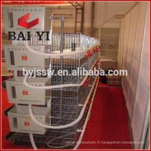 Cage de poulet / Chick Layer Cage / Poulet Maison Vente chaude de haute qualité