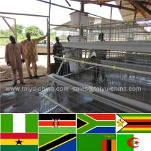 Trade assurance NO.1 Stong steel feed trough layer chicken cages for kenya hen farm (poultry equipment and own oversea agent)