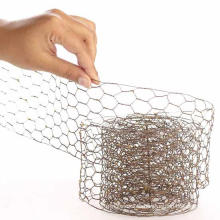 China Expert Factory of Chicken Wire Netting