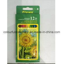 Wasserlöslicher Farben-Bleistift-Satz 12PCS mit kundengebundenem Logo