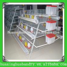 Cage d'élevage de poulet de volaille, système automatique de cage de poulet