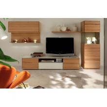 Pantalla plana Sala de TV armarios (TV20)