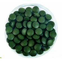 Zuverlässige Qualitäts-Nahrungsergänzung 250 mg Chlorella-Tabletten
