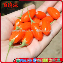 Capsules of goji berry purchase goji berries dried fruit