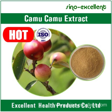 Best Quality for Natural Herbal Extract Camu Camu fruit Extract export to Syrian Arab Republic Manufacturers