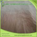 1300X2550X0,15-0,5mm A Grade Plb Furnier von Linyi