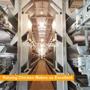 Sistema Agrícola com Ovos Transportando Gaiola de Bateria de Camada