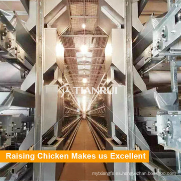 Tianrui Low Price H Type Automatic Poultry Cage 5 capas