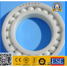 High Performance Full Ceramic Bearing 6008