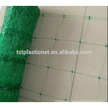 plant climbing plastic wire mesh for cucumber