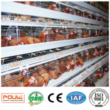 a Frame Coopérative Poultry Egg Layer Cage Poulet Batterie Coop