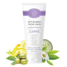 Natural Anti-Blemish Facial Wash Acne-Prone Skin Exfoliating Cleanser