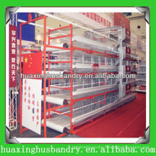 advanced and automatic chicken egg laying equipment