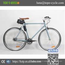 DS-1 Chrome-molybdène acier de haute qualité e-bike pédale assist au lithium batterie e vélo vélo électrique 2017