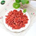 Dried goji berry/wolfberry 250g