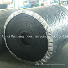 Cinta transportadora resistente al frío estándar de DIN / ASTM / Cema / Sha