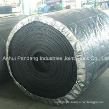 DIN/ASTM/Cema/Sha Standard Cold Resistant Conveyor Belt