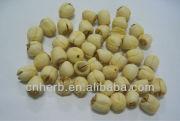 Dried Lotus seed,Semen nelumbinis,Nelumbo nucifera,White lotus seeds,Lotus nut,Chinese medicine,Mahkana