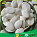 Semillas de calabaza orgánica en cáscara