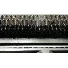 Clôture hexagonale en treillis métallique pour l'agriculture directe d'usine