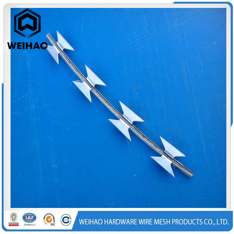 Safty Hot Dipped Galvanized Barbed Wire