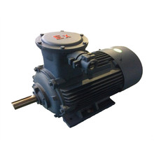 Explosion-Proof Frequency Converter Motor