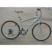 Brazil Hot Sale 18 Speed City Bike Urban Bicycle (FP-MTB-ST051)