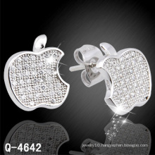 New Design Fashionable Silver Jewelry Ear Stud 925 Silver (Q-4642)