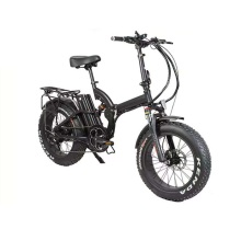 48V 500W electric fat tire 20 inch ebike