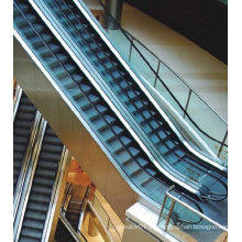 Escaleras mecánicas de interior Best Buy