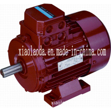 3 Three Phase Pole-Changing Yd Series Asynchronous Electric Motor (AC motor)