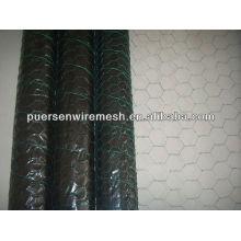 ISO fonte de fábrica Hexagonal wire netting