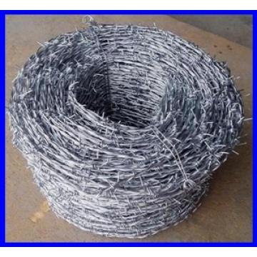 GV eletro galvanizado de arame farpado para vendas