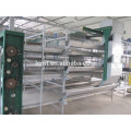 China sell automatic Quail cages and equipment
