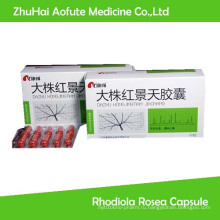 Дополнение к лекарственной форме для здоровой пищи Rhodiola Rosea Capsule