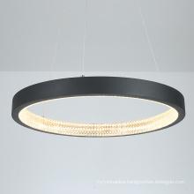 Nordic lighting iron ring lamp creative pendant dining room modern led line chandelier for livingroom