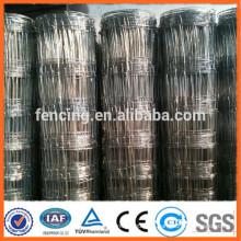 Pastizales de alta calidad para la cría de alambre de baja emisión de carbón de campo