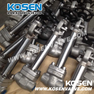 Stainless Steel Cryogenic Globe Valves (DJ61)