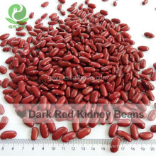 For Sale High Quality Dark Red Kidney Beans