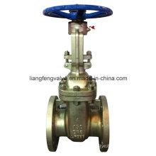 Válvula de compuerta de acero inoxidable de extremo de brida (Z41W-150LB)