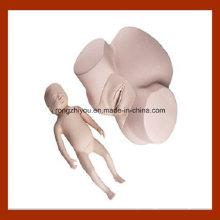 Modelo de Treinamento de Obstetrícia Médica de Alta Qualidade, Pelvis com Modelo de Prática de Fetal Head